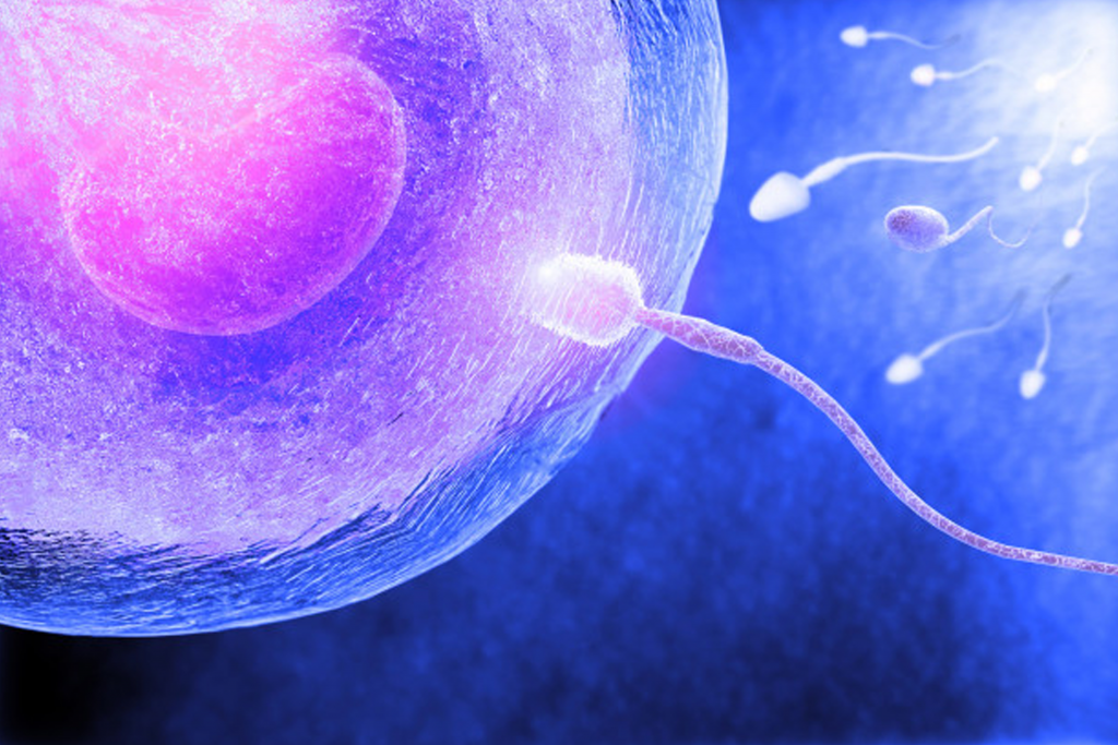 تقویت اسپرم